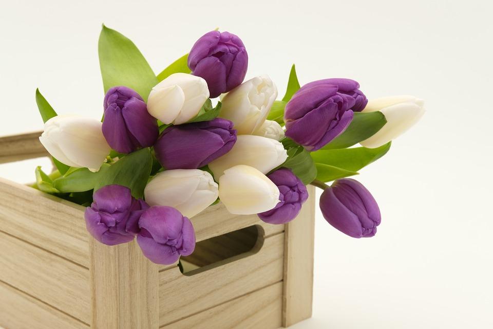 bouquet_3158358_960_720